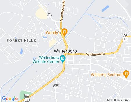 payday loans in Walterboro