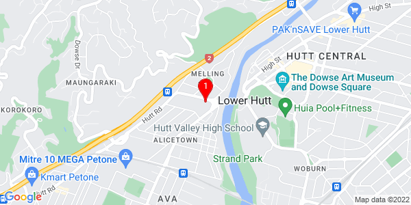 Google Map of Western Mailing, 46 Railway Avenue, Lower Hutt