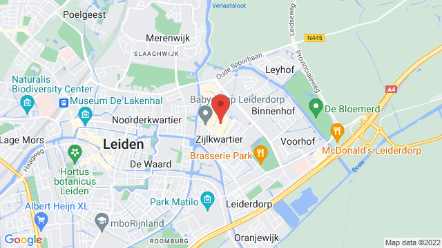 Ford+Leiderdorp op Google Maps