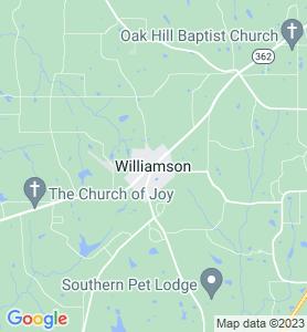 Williamson GA Map