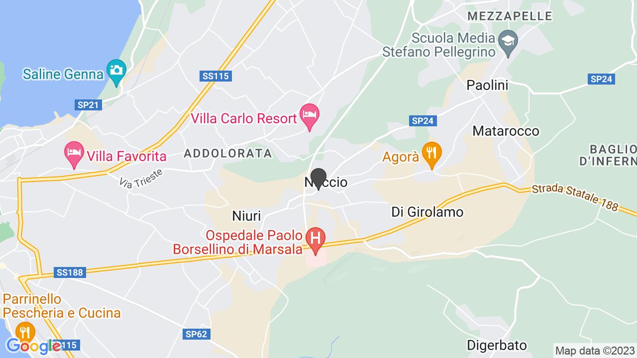 AMICI DI GRAZIA PULEO ONLUS