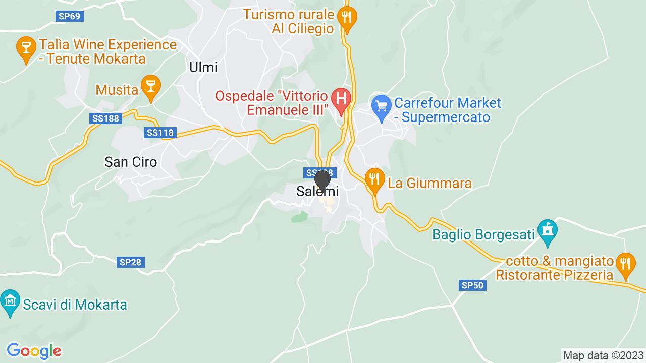 A.I.D.A. ASSOCIAZIONE ITALIANA DIVERSAMENTE ABILI