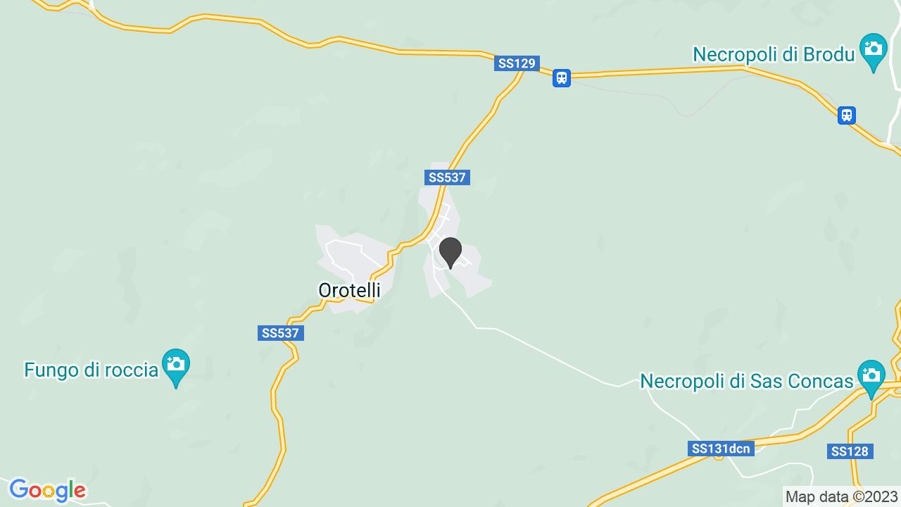 ASSOC. ANTONIO LOSTIA VITTIME MONOSSIDO DI CARBONIO ONLUS
