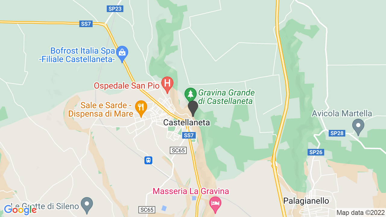 FONDAZIONE IL SAMARITANO CASTELLANETA - ONLUS