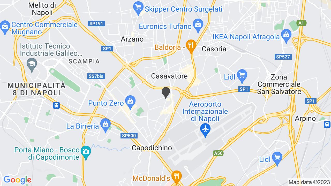 ASSOCIAZIONE ITALIANA SINDROME DI WILLIAMS SEZIONE CAMPANIA