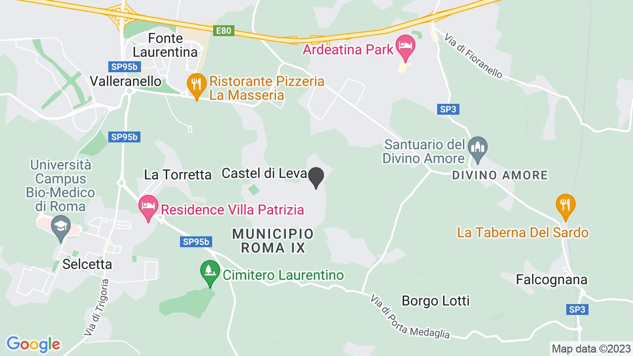 FEDERAZIONE ITALIANA DIVERSAMENTE ABILI - ONLUS