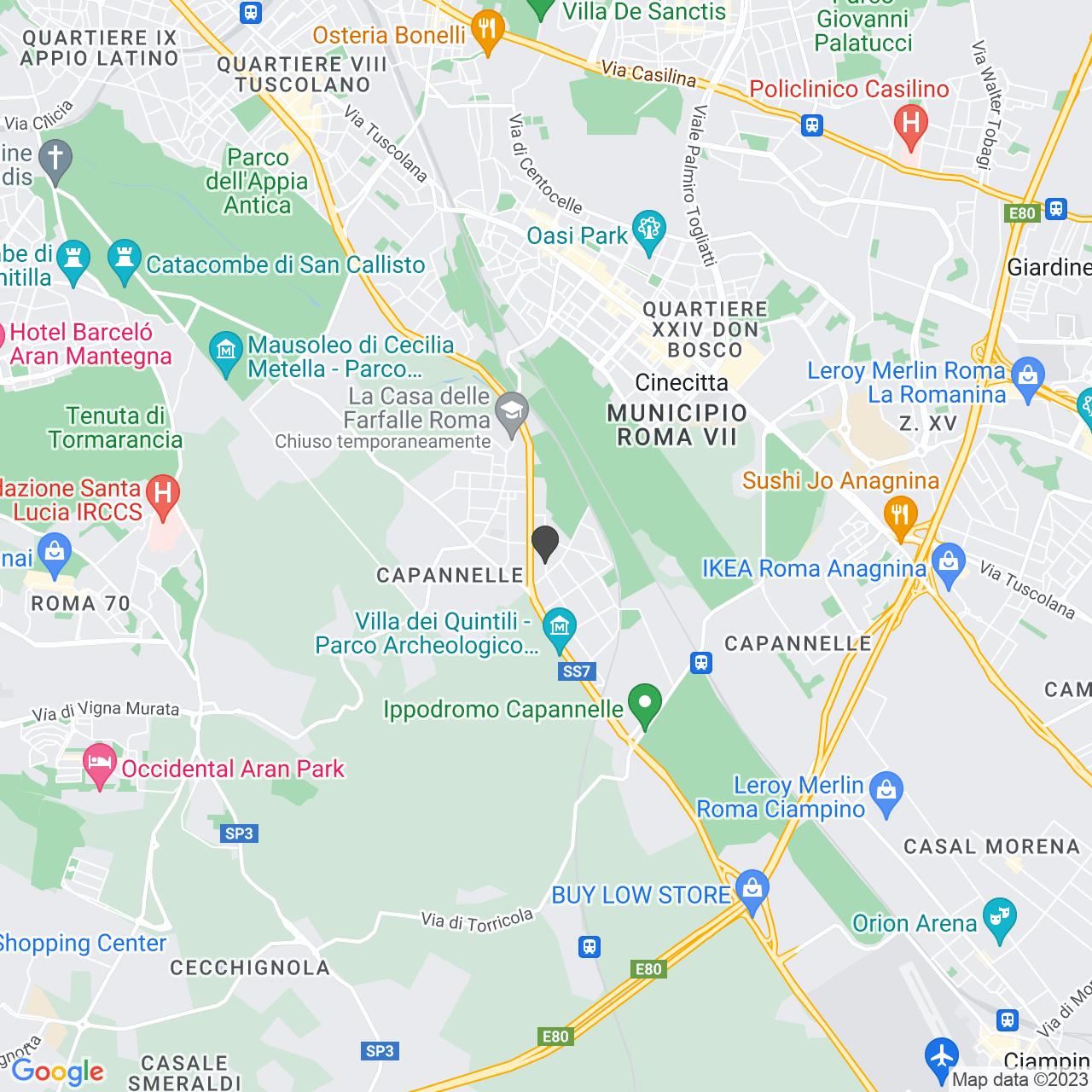 COMUNITA' CAPODARCO DI ROMA-ONLUS