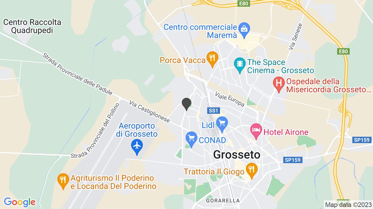 ASSOCIAZIONE GROSSETANA GENITORI DI BAMBINI PORTATORI DI HANDICAP - ONLUS