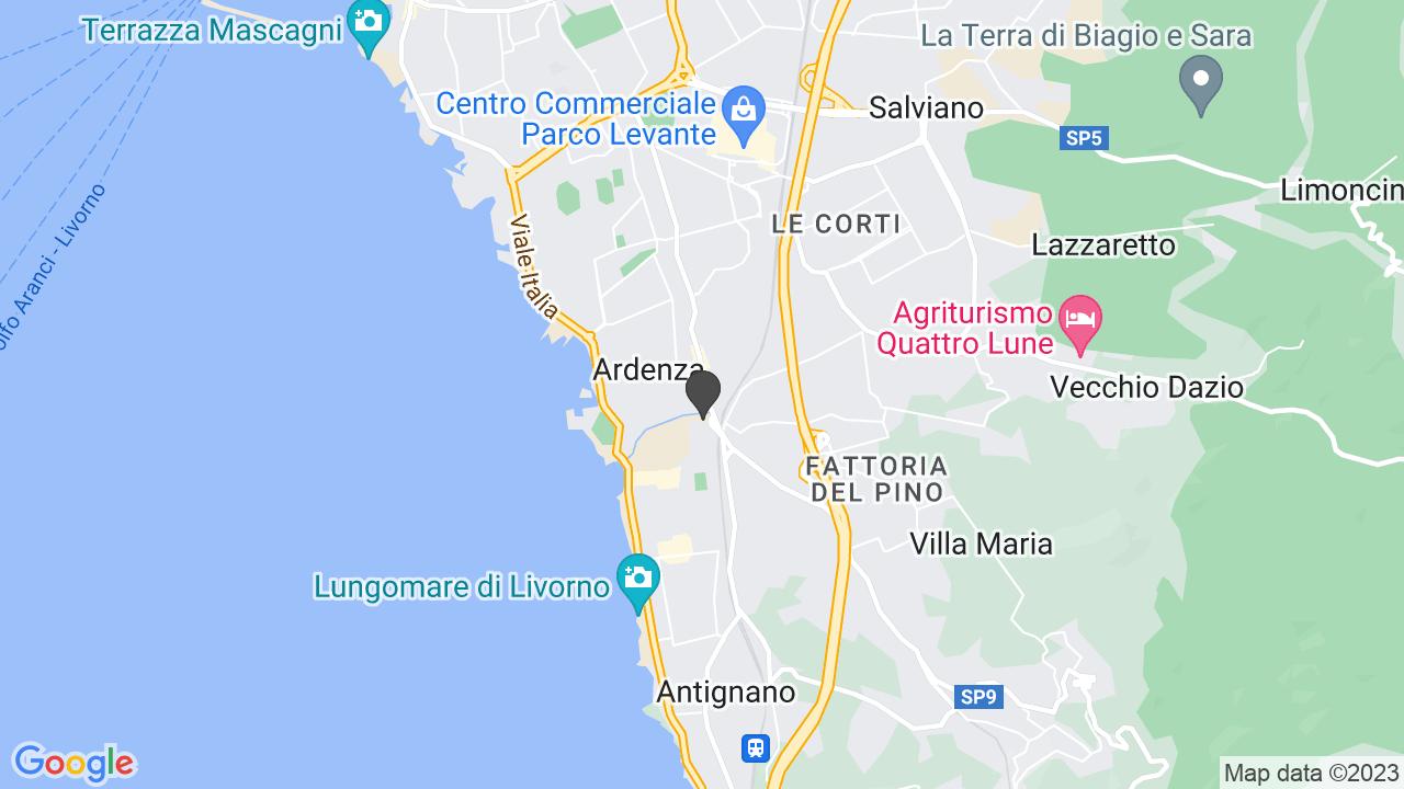 ASSOCIAZIONE ITALIANA PERSONE DOWN SEZ. DI LIVORNO APS