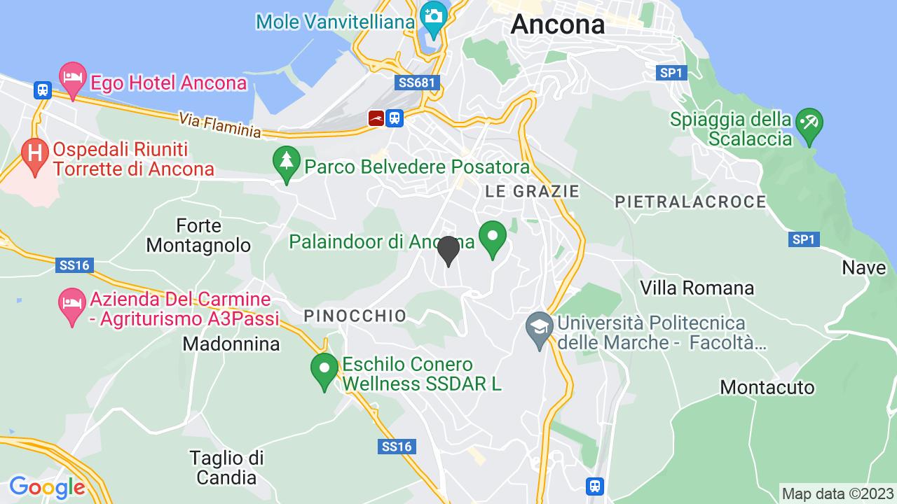 CROCE ROSSA ITALIANA - COMITATO DI ANCON - ORGANIZZAZIONE DI VOLONTARIATO