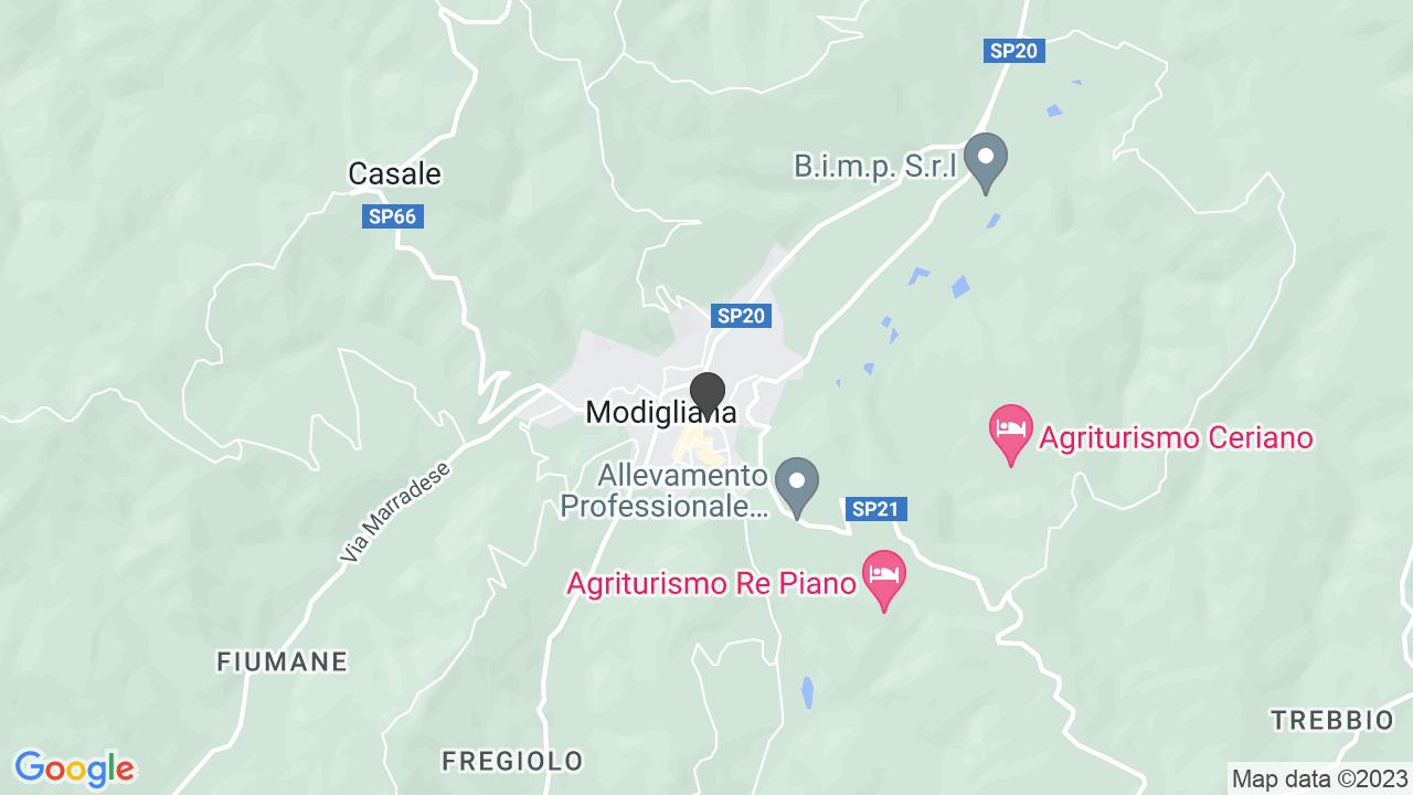 ASSOCIAZIONE MAZZINIANA ITALIANA - ONLUS
