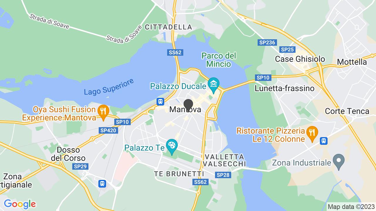 Basilica-Santuario di S. Luigi Gonzaga