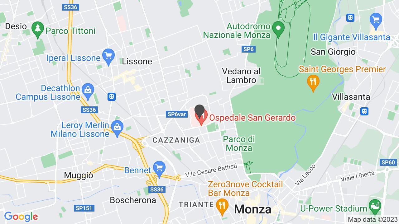 ANTICOAGULATI LOMBARDI -A.L MONZA SAN GERARDO ONLUS
