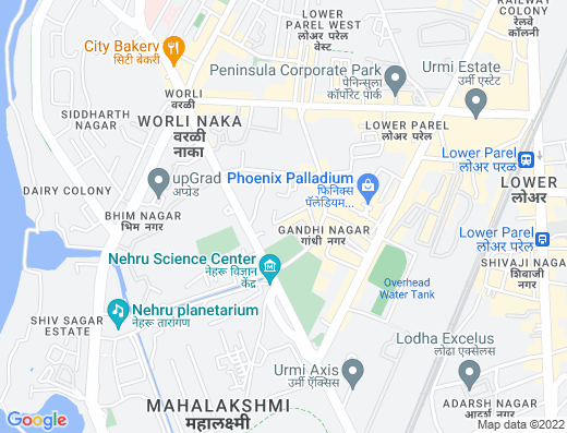 Flat on rent in Indiabulls Blu, Lower Parel