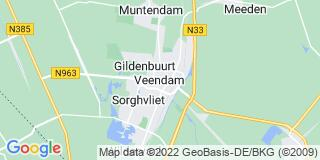Volunteer work in Veendam
