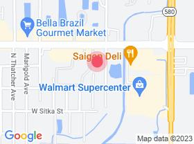 8217-Blossom-Ave-Tampa-FL-33614