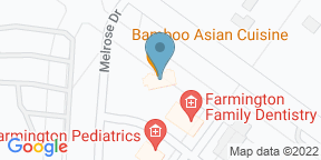 Google Map for Bamboo Asian Cuisine
