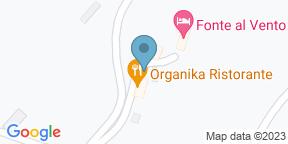 Google Map for Organika