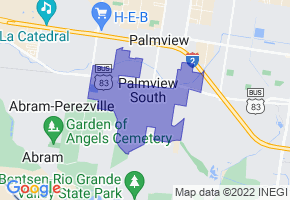 Palmview South, Texas Border Map - Phone Size