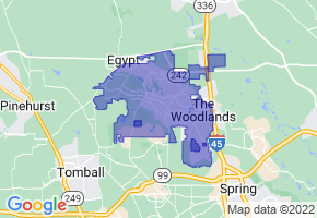 The Woodlands, Texas Border Map - Phone Size