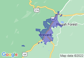 Brevard, North Carolina Border Map - Phone Size