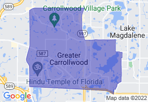 Carrollwood, Florida Border Map - Phone Size