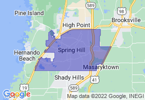Spring Hill, Florida Border Map - Phone Size