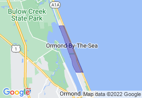 Ormond-by-the-Sea, Florida Border Map - Phone Size
