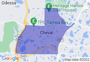 Cheval, Florida Border Map - Phone Size