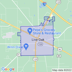 Live Oak, Florida Border Map