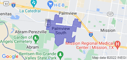 Palmview South, Texas Border Map