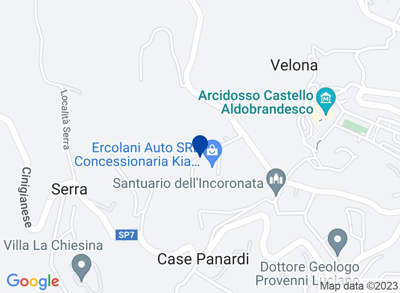Locale artigianale ad ARCIDOSSO, via Monta...