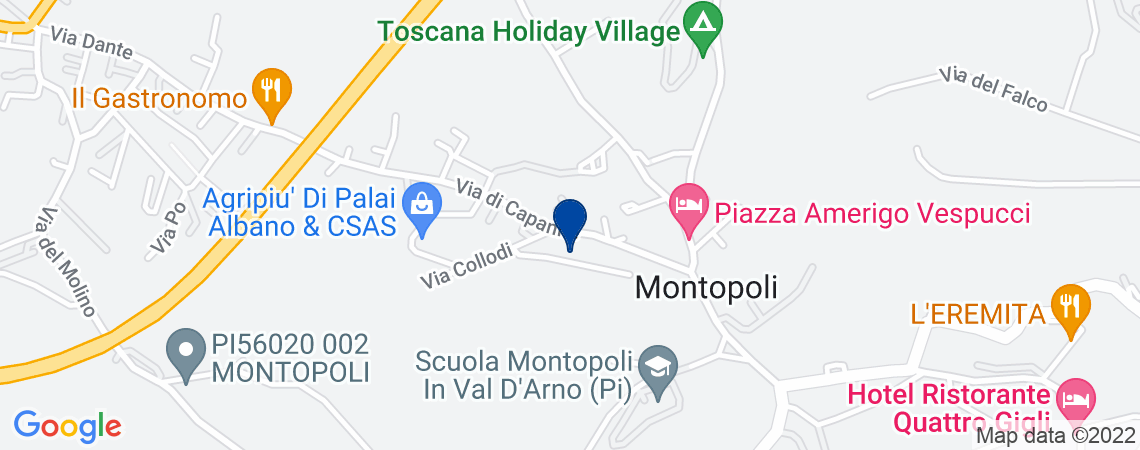 Villa, MONTOPOLI IN VAL D'ARNO