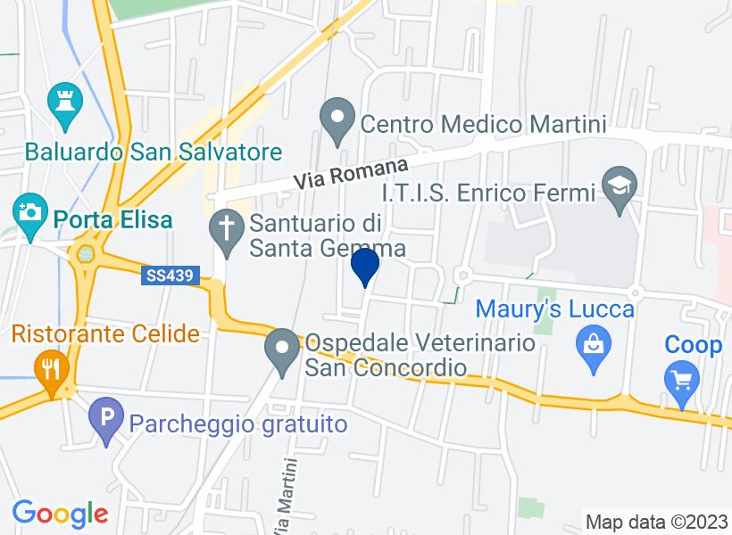 Appartamento, LUCCA