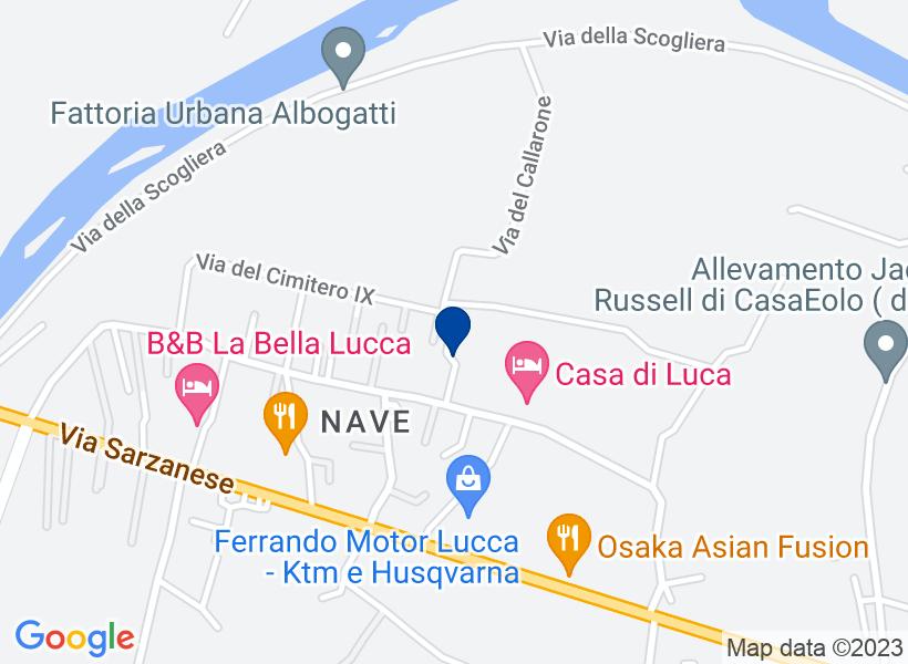 Terreno, LUCCA