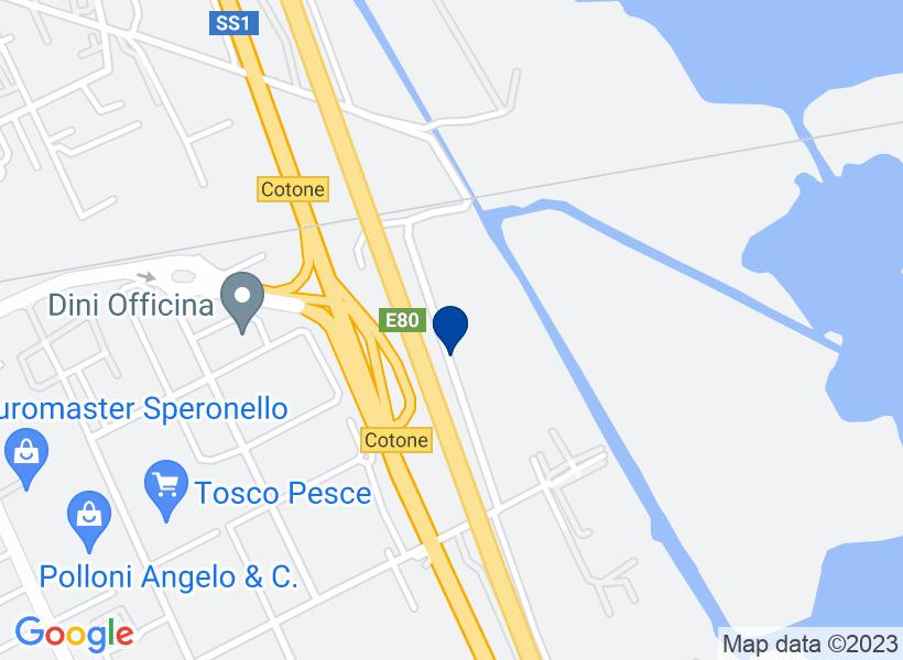 Ufficio, VIAREGGIO