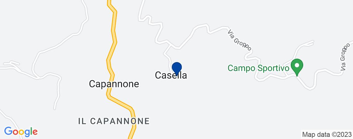 Fabbricati rurali e terreni in Riolunato (...