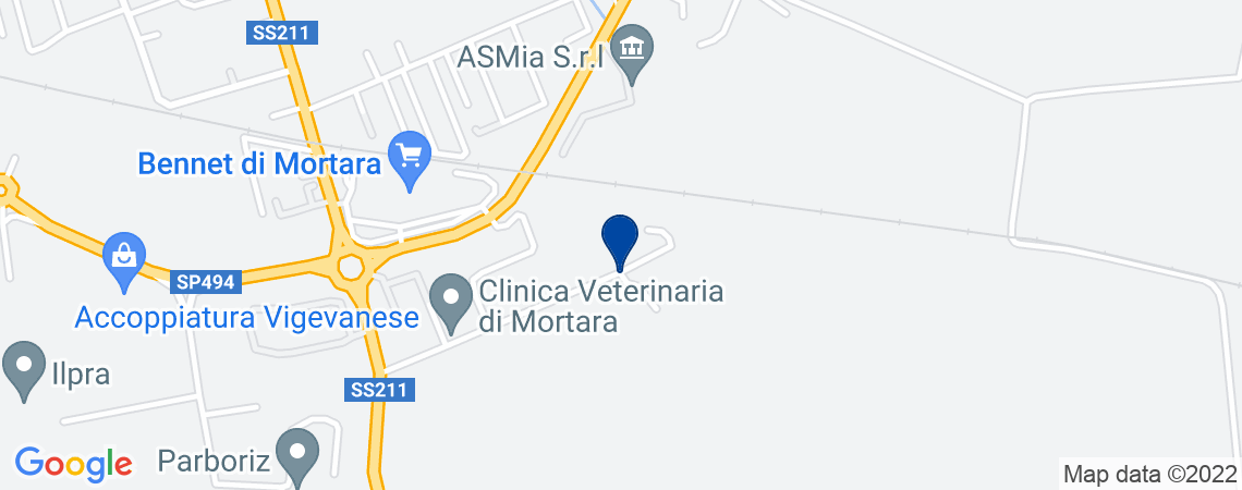 Appartamento, MORTARA