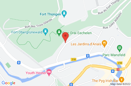 1, rue Jules Wilhelm L-2728 Luxembourg Luxembourg