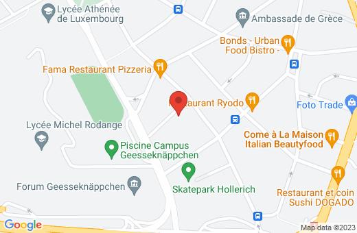 3, rue Guido Oppenheim L-2263 Luxembourg Luxembourg