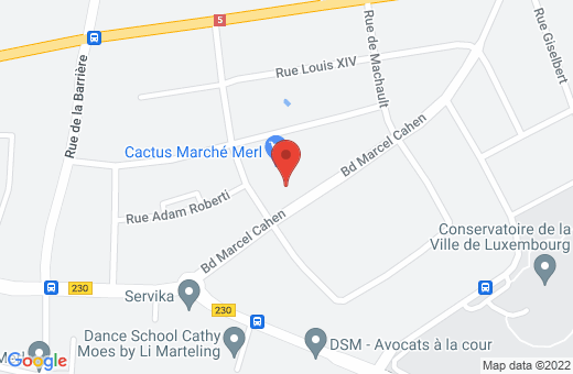 52, boulevard Marcel Cahen L-1311 Luxembourg Luxembourg