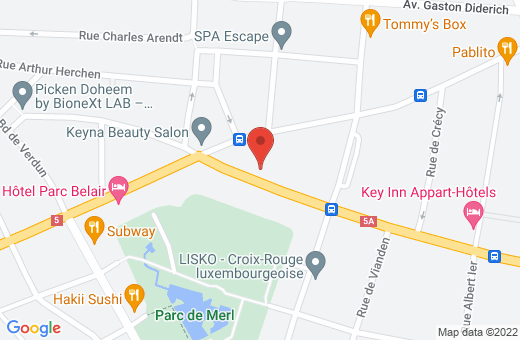 60, avenue Guillaume L-1650 Luxembourg Luxembourg
