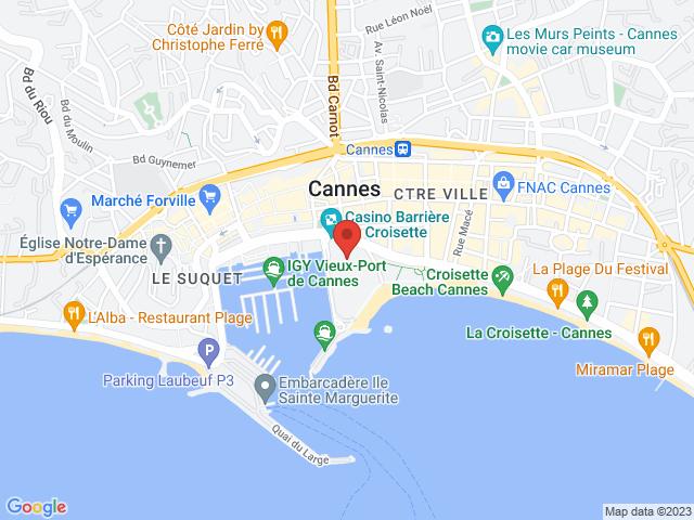 Carte Google statique