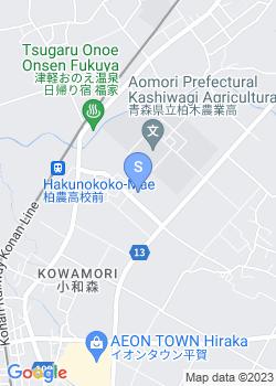 平賀幼稚園