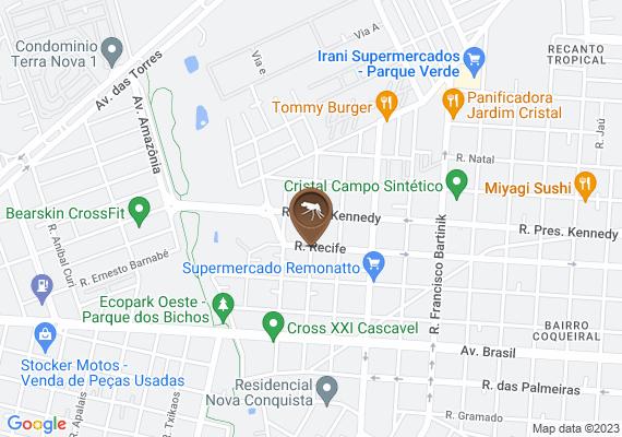 Mapa MUITO LIXO E SUCATA ACUMULADOS ATE CARCAÇA DE CARRO TEM NO