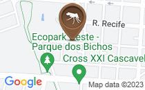 Mapa Foco da Dengue no meu bairro