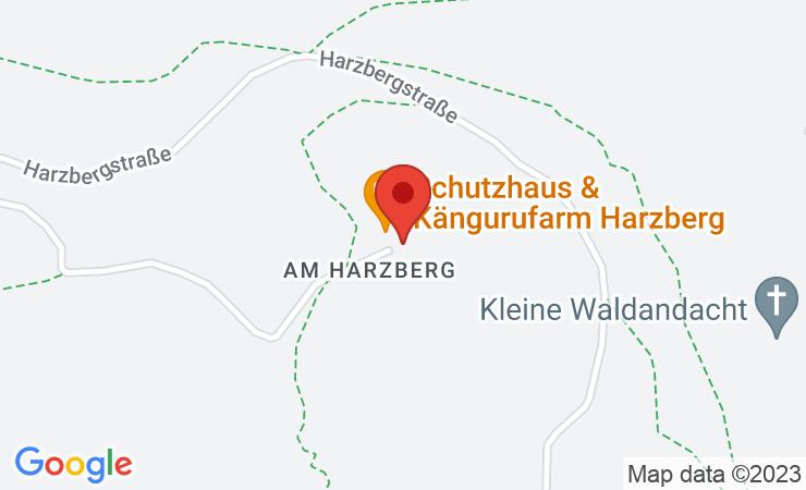 """Geokoordinaten Circus Holi Moli: Neue Veranstaltungsserie """"Streichelzoo"""" bespielt das Schutzhaus am Harzberg – BILD"""