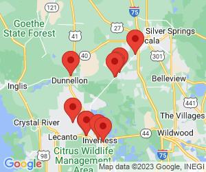 Verizon Wireless near Dunnellon, FL