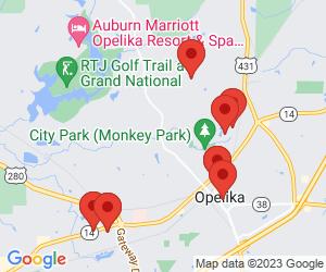 Counselors-Licensed Professional near Opelika, AL