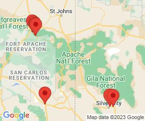Blue Ridge Pet Clinic near Glenwood, NM